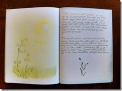 5th grader 15 grasses