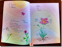 5th grader 2 botany secret of nature