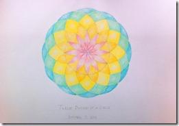 6 6th grader geometry (5)