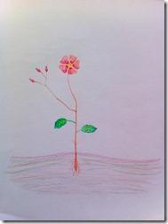 mom 5 flower