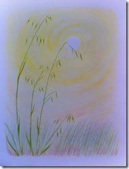mom 6 grasses