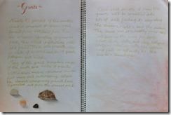 Granite - 6th grader