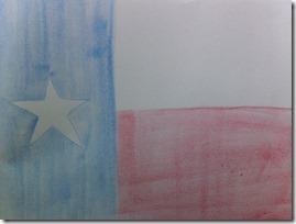 h 17 texas flag