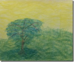 s 08 flower mound painting